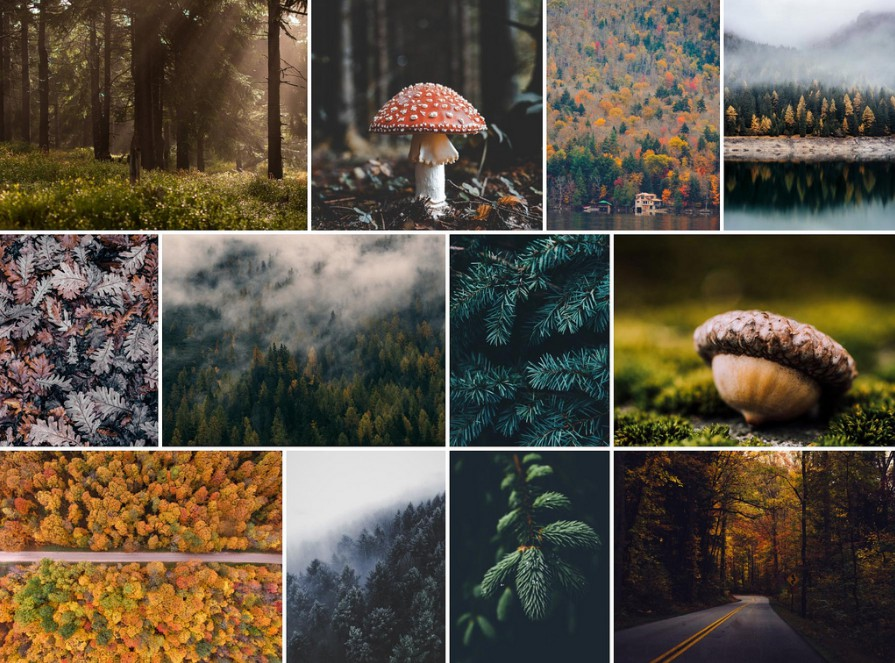 Responsive React Masonry Photo Gallery Component